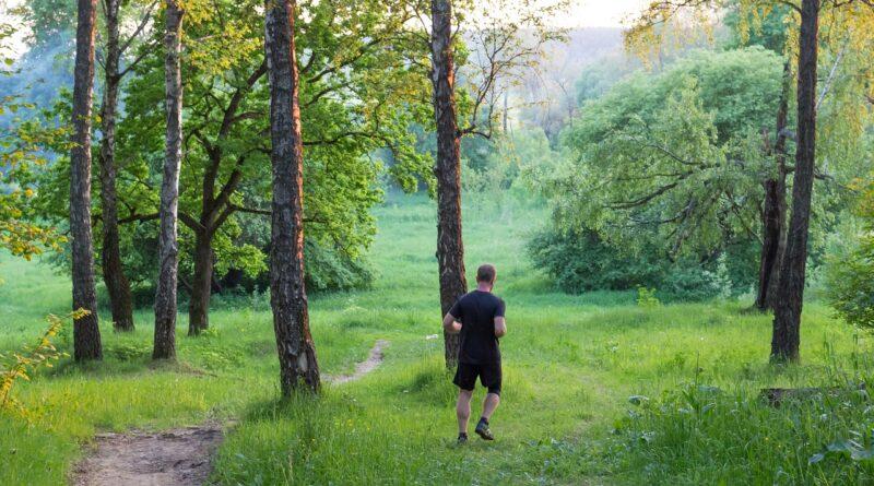 Buty do biegania po lesie